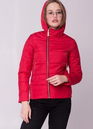 Приталенная весенняя демисезонная куртка от производителя
