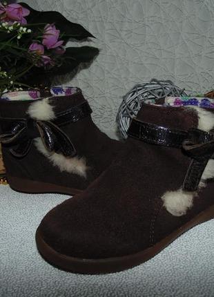 Суперовые ботинки челси ugg australia
