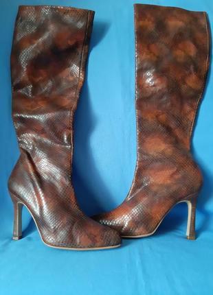 Кожаные сапоги,ботфорды,чоботи из змеиным принтом от shellys