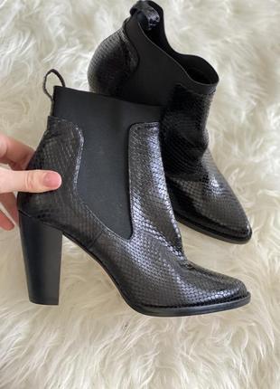 Казаки черного цвета в змеиный принт на удобных каблуках