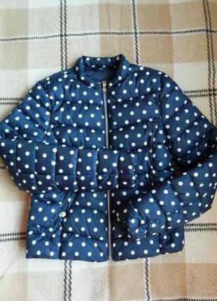 Куртка весенняя в горошек