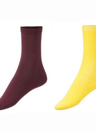 Набор ярких носков 4 пары р. 35-38 германия