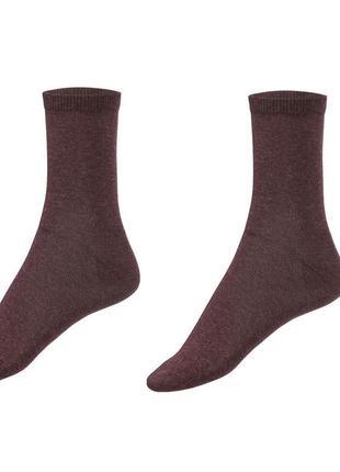 Набор коричневых носков 2 пары р. 39-42 германия