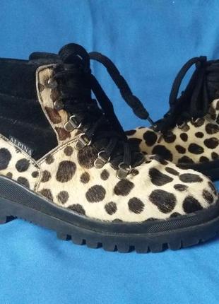 Шикарные ботинки,черевики от mecanik's з оригинальным принтом✔