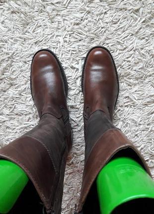 Брендовые кожаные сапоги,деми,2 фото