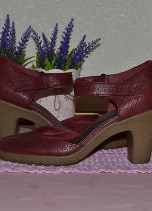Р. 37 - 24 см. бордовые босоножки, женская обувь aerosoles. босоножки закрытые.