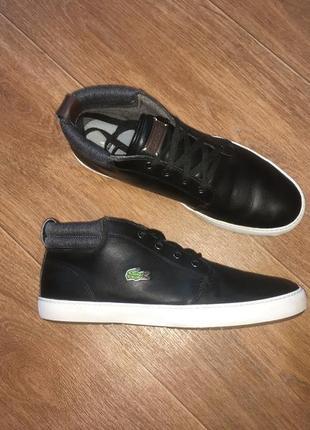 Кожаные ботинки, кроссовки lacoste, оригинал, р-р 43-44 стелька 28 см