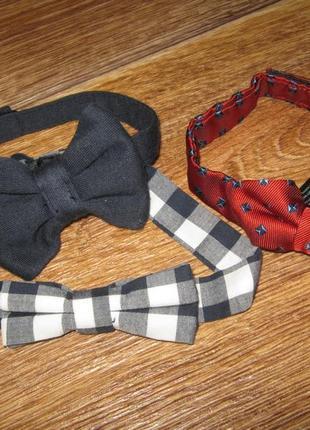 Бабочки-галстук
