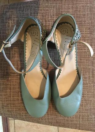Туфли бренда «хамелеон»