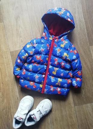 Демисезонная куртка, курточка +подарок