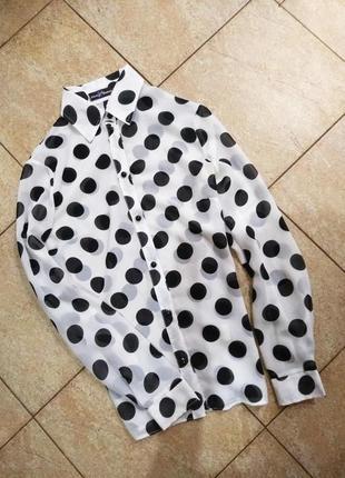 Актуальная шифоновая блуза рубашка в горох