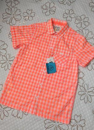 Нова сорочка рубашка cool club