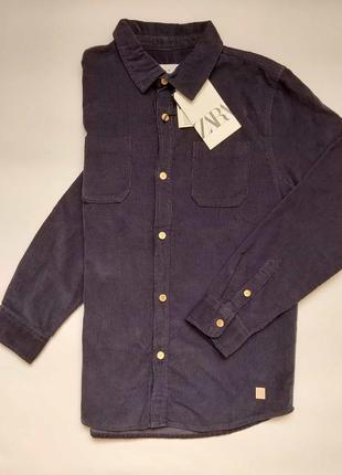 Вельветовая рубашка zara.