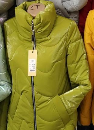 Куртка, бархатный лак, размер 50