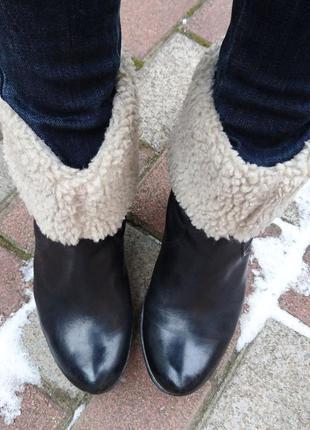 Сапоги clarks, утеплённые ботинки, кожаные сапоги