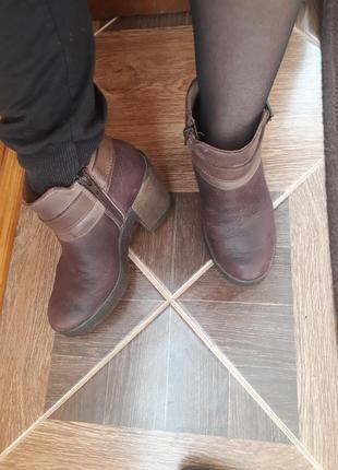 Ботильйони ботинки черевички