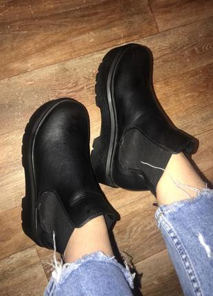 Ботинки челси сапоги демисезонные эко кожа