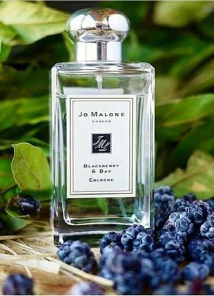 Невероятно красивый аромат джо малон ежевика лавр  💛  jo malone blackberry & bay