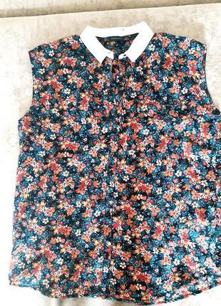 Блуза, топ zara