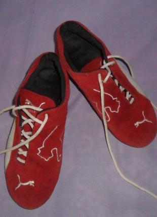 Брендовые кроссовки из натуральной замши!