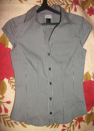 Рубашка,блузка в мелкую клеточку