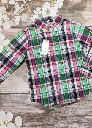 Яркая рубашка джимбори