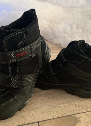 Ботинки, трекінгові черевики