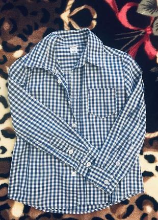 Рубашка в синюю клеточку.