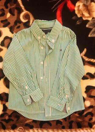 Рубашка в  зелёную полоску.