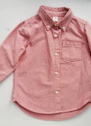 Рубашка мальчику розовая оксфорд gap kids 3t