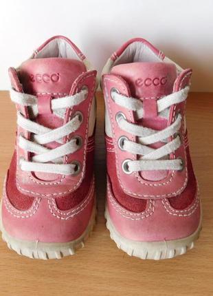Кожаные ботинки eccо 21 р. стелька 13,6 см.