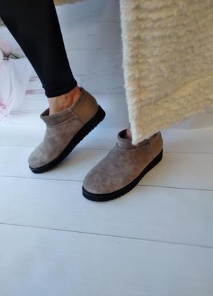 Кожаные ботинки угги низкие