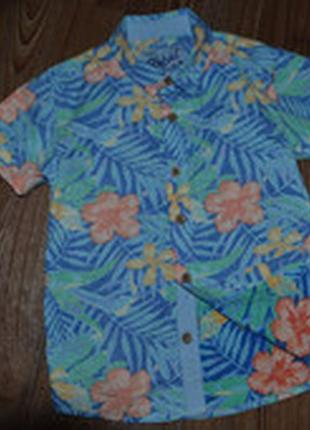 Рубашка rebel сост нов лето