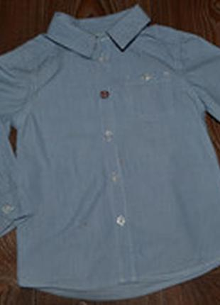 Рубашка коттон mexx