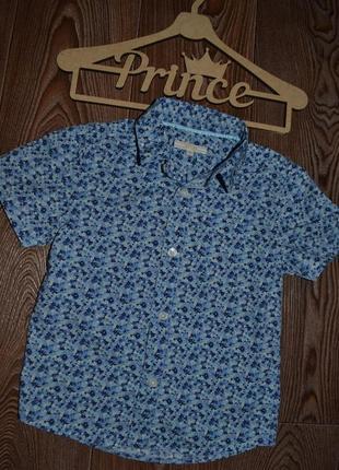 Рубашка стиляге john lewis 4г