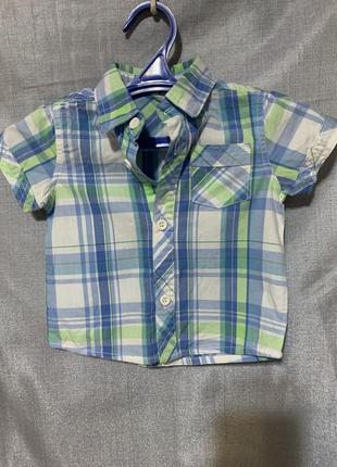 Рубашка baby wear