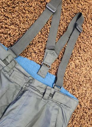 Лыжные штаны alpine recco