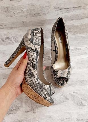 Стильные! трендовые туфли  / туфельки 🖤