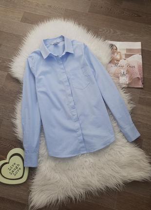 Хлопковая рубашка в полосу/полоску классическая/классика h&m