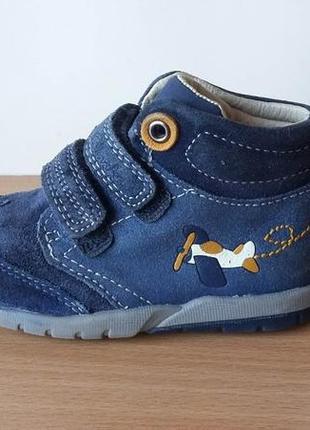 Кожаные ботинки сlarks 21 р. стелька 13,7 см