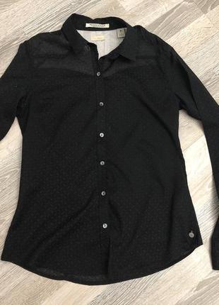 Тоненька рубашка в принт