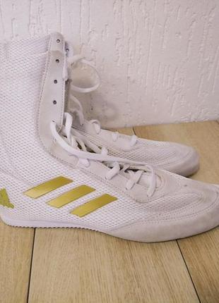 Боксерки adidas boxhog plus da9899