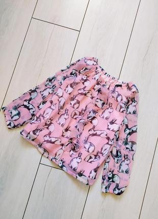 Актуальная блузка h&m с кроликами