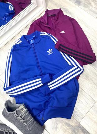 Спортивка adidas синяя