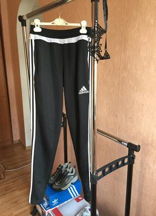 Adidas climacool1 фото