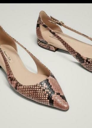 Кожаные туфли балетки босоножки змеиный принт кожа крокодила питона massimo dutti