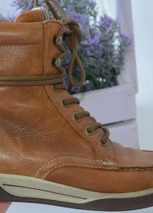Демисезонные кожаные ботинки ecco р. 36 по стельке 24 см