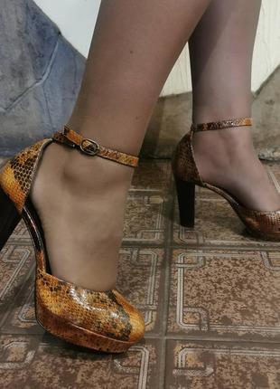 Шикарные туфли-босоножки minelli, змеиный принт, кожа внутри и снаружи, указан размер 40