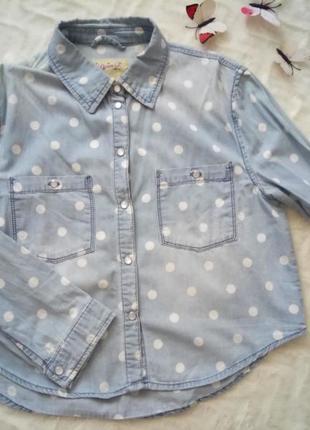 Укорочена жіноча сорочка в горошок