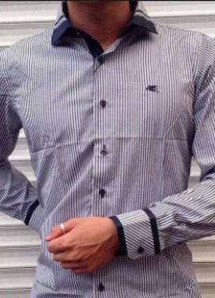 Стильная рубашка в синею полоску mondo